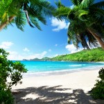 Knaller – 7 Tage Mallorca im 4,5 Sterne Hotel Viva Bahia inkl. Flug für 193€