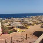 14 Tage Sonnenstrand im 4 Sterne Hotel Ivana Palace mit Frühstück und Flug für 255€