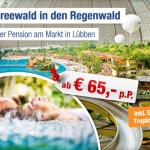 Tropical Islands Eintritt mit Übernachtung im 4 Sterne Hotel inkl. Frühstück für 65€